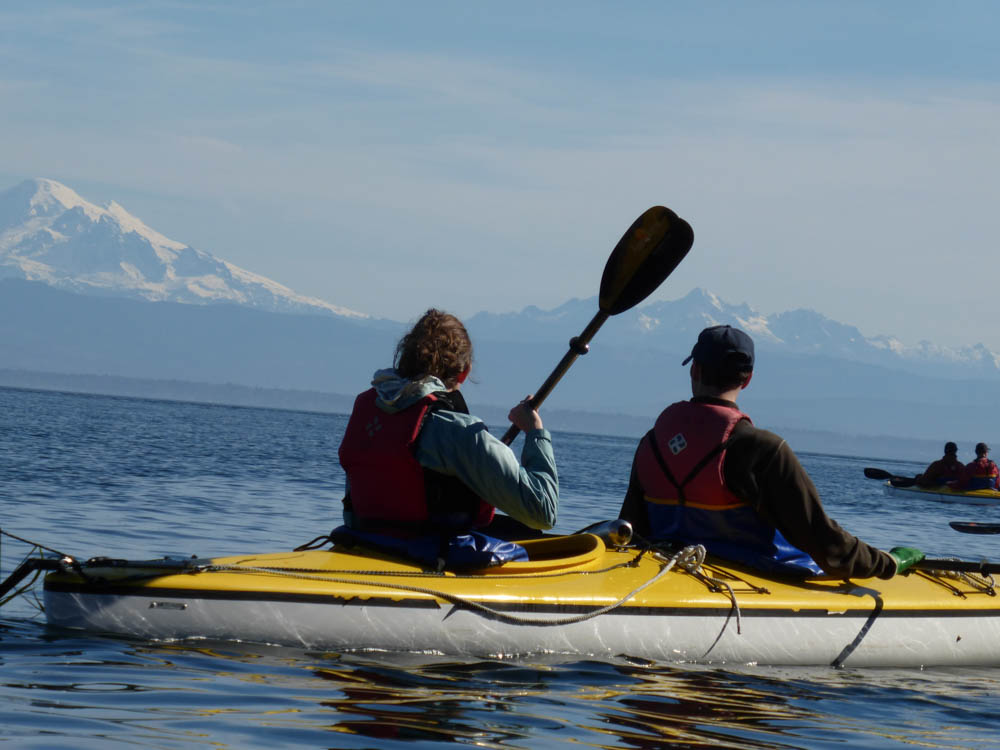 Seawolf Adventures Kayaking